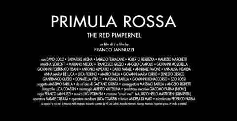 Primula Rossa